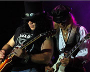 November Rain - Guns 'N Roses Tribute
